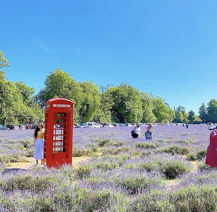 イギリスのテレフォンボックスと風景